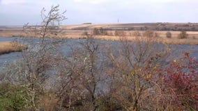 Tempo ventoso sul fiume Vista panoramica del fiume stock footage