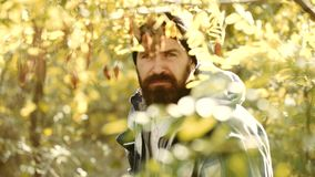Temporada de caza Hombre con el arma Licencias de caza Cazador furtivo con el rifle que mancha algunos ciervos Cazador furtivo de almacen de metraje de vídeo