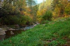 Temporada de otoño de descoloramiento fotografía de archivo libre de regalías