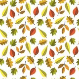 Temporada de otoño del ornamento de Autumn Seamless Pattern Background Leaves Foto de archivo libre de regalías