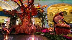 Temporada de otoño en invernadero del hotel de Bellagio y jardines botánicos imagen de archivo libre de regalías