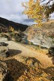 Temporada de otoño en Nueva Zelandia fotografía de archivo