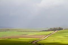 Temporale sopra le pianure verdi Fotografie Stock Libere da Diritti