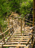 Temporary bamboo staircas. Temporary bamboo staircas in forest Stock Photography