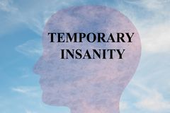 Temporary Insanity concept. Render illustration of TEMPORARY INSANITY title on head silhouette, with cloudy sky as a background Royalty Free Stock Images