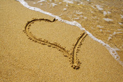 Temporary love.  Royalty Free Stock Photos