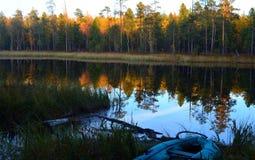 Temprano por la mañana - pesca imagen de archivo libre de regalías