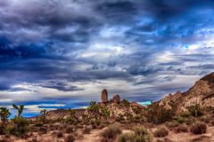 Temps chez Joshua Tree National Park Images libres de droits