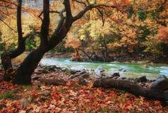 Temps d'automne à la rivière d'Aspropotamos photos stock