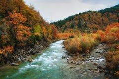 Temps d'automne à la rivière d'Aspropotamos photos libres de droits