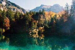 Temps d'automne au blausee de lac de forêt Photo stock