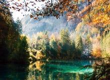 Temps d'automne au blausee de lac de forêt Photographie stock libre de droits