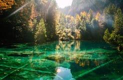 Temps d'automne au blausee de lac de forêt Photo libre de droits