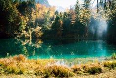 Temps d'automne au blausee de lac de forêt Photos stock