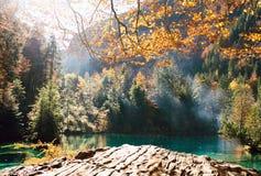 Temps d'automne au blausee de lac de forêt Images stock