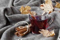 Temps d'automne avec du vin chaud et les épices chauds Photos stock