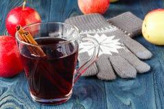 Temps d'automne avec du vin chaud et les épices chauds Photographie stock libre de droits