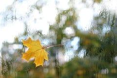 Temps d'automne dehors Image libre de droits
