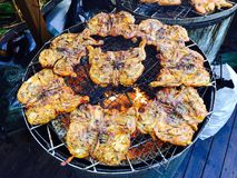Temps d'exposition de gril de poulet Photos stock