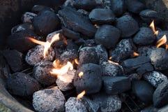 Temps de barbecue Images libres de droits