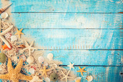Temps de déplacement d'été Fond de vacances de mer avec de diverses coquilles Photos libres de droits
