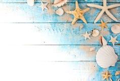 Temps de déplacement d'été Fond de vacances de mer avec de diverses coquilles Photo stock