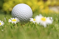Temps de golf Image libre de droits