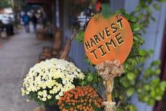 Temps de récolte Image stock