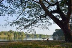 Temps de relaxation en parc Images libres de droits
