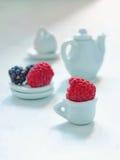 Temps de thé - baies fraîches, tasse de thé blanche et théière sur le fond blanc image stock