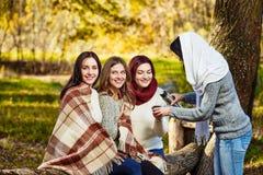 Temps de thé de femmes en parc Photos stock