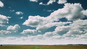 Temps-faute de paysage rural de pré de champ de campagne d'été sous le ciel dramatique scénique avec les nuages pelucheux banque de vidéos