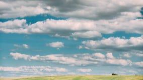 Temps-faute de paysage rural de pré de champ de campagne d'été sous le ciel dramatique scénique avec les nuages pelucheux clips vidéos