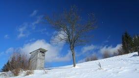 Temps-faute des nuages blancs passant par au-dessus du paysage d'hiver en montagnes carpathiennes banque de vidéos