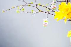 Temps heureux de Pâques, Pâques Photographie stock libre de droits