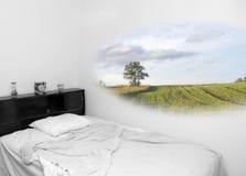Temps rêveur (mélangé, couleur et noirs et blancs) Image libre de droits