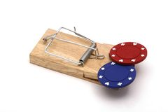 Temptation. Live mouse trap loaded with gambling chips Stock Photo