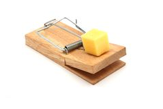Temptation. Traditional wood mouse trap with piece of fresh cheddar cheese Royalty Free Stock Image