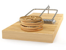 Temptation. Golden coins and wooden mouse-trap on white background Royalty Free Stock Image