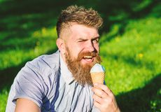 Temptation concept. Bearded man with ice cream cone. Man with long beard eats ice cream, while sits on grass. Man with. Beard and mustache on winking face enjoy royalty free stock image