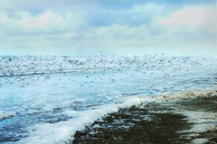 Tempête de l'hiver de Long Beach Washington Images libres de droits