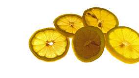 Tempting lemon. Food, food, fruit, fruit round sliced lemon, orange color, transparent, fully food temptation Royalty Free Stock Photos