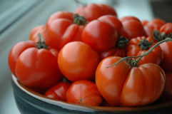 Tempting Tomatoes. A big bowl of juicy ripe tempting tomatoes Royalty Free Stock Photography