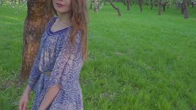 Tempting young woman walking in an apple orchard in the spring flowers white. Portrait of a beautiful girl in the stock footage