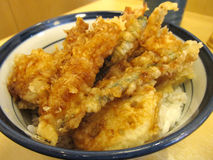 Tempura Bowl rice Stock Photo