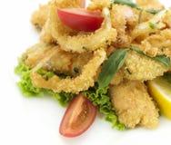 Tempura con gli anelli ed il pesce dei calamari Fotografia Stock Libera da Diritti