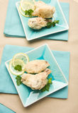 Tempura fried chicken wings Stock Images