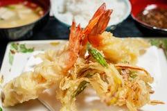 Tempura fritado do camarão Foto de Stock