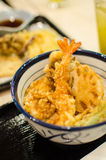 Tempura on rice ,  Japanese food Stock Images