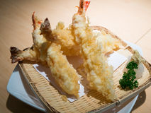 Tempura Shrimps Royalty Free Stock Photo